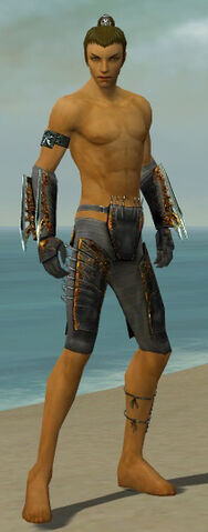 File:Assassin Exotic Armor M gray arms legs front.jpg