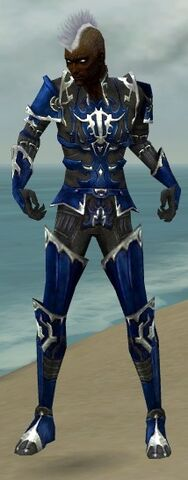 File:Necromancer Tyrian Armor M dyed front.jpg