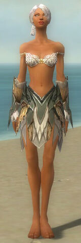 File:Paragon Norn Armor F gray arms legs front.jpg