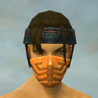 File:Assassin Elite Canthan Armor M dyed head front.jpg