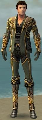 File:Mesmer Asuran Armor M gray front.jpg