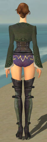 File:Mesmer Rogue Armor F gray chest feet back.jpg