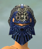 File:Warrior Elite Platemail Armor F dyed head front.jpg