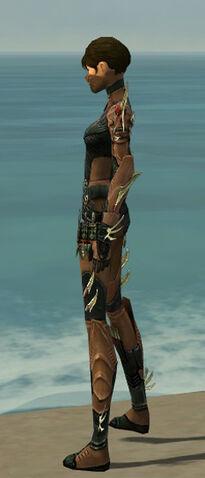File:Assassin Elite Imperial Armor F dyed side.jpg