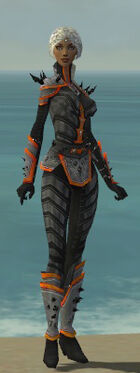 Elementalist Obsidian Armor F dyed front