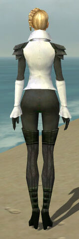 File:Mesmer Ascalon Armor F gray back.jpg