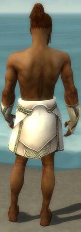 File:Paragon Asuran Armor M gray arms legs back.jpg