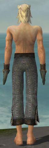 File:Elementalist Sunspear Armor M gray arms legs back.jpg