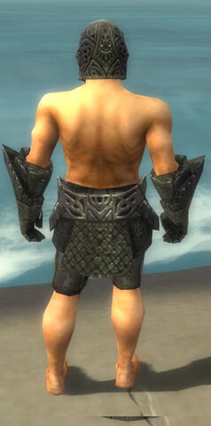 File:Warrior Elite Platemail Armor M gray arms legs back.jpg