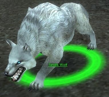 File:Tundra Wolf.jpg