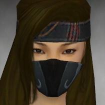 File:Assassin Vabbian Armor F gray head front.jpg