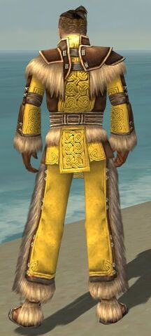 File:Monk Norn Armor M dyed back.jpg