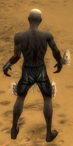 File:Necromancer Primeval Armor M gray arms legs back.jpg
