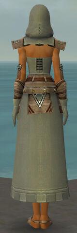 File:Dervish Istani Armor F gray back.jpg