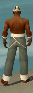 Monk Ascalon Armor M gray arms legs back