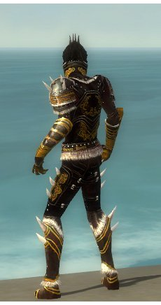 File:Necromancer Norn Armor M dyed back.jpg