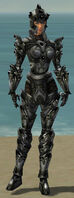 Warrior Obsidian Armor F gray front