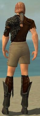 Ranger Istani Armor M gray chest feet back