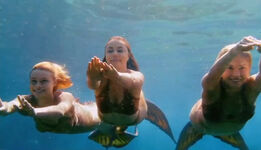 Mako Mermaids Under Water