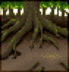 Background tree roots