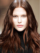 HairColor-lg-new-md