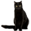 File:Black cat sitting.png