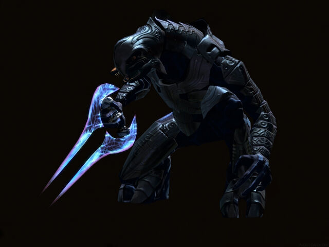 File:Arbiter in the Dark.jpg