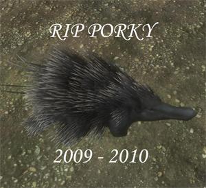 File:Porky.jpg