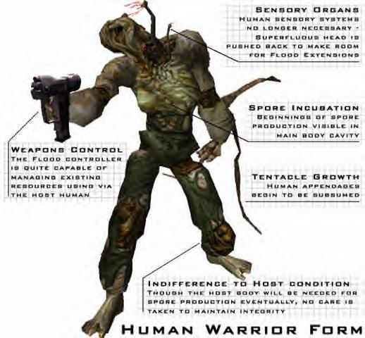 File:Warrior Form Human2.png