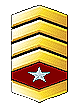 File:Master Sergeant.PNG