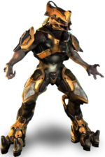 Storm Elite Warrior