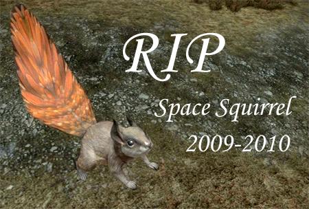 File:Space Squirrel.jpg