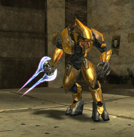 File:Gold Elite.JPG