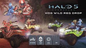 H5G Promotional-HogWild