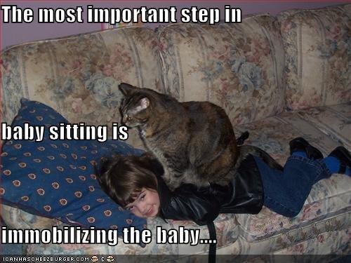File:Baby sitting.jpg