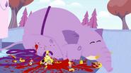 STV1E12.3 Blood on elephant