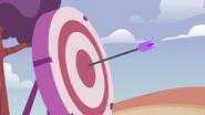 STV1E13.2 Bullseye