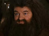 Hagrid comforting hermione