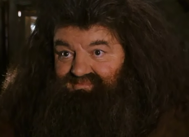 File:Hagrid comforting hermione.png