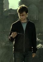 Harry Elder Wand