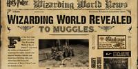The Wizarding World News