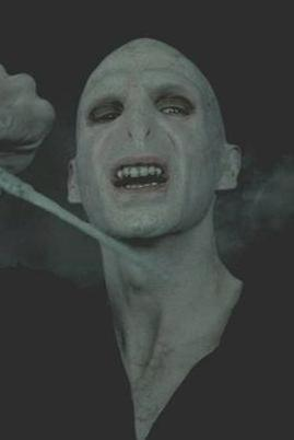 Bestand:Voldemorthead2.JPG