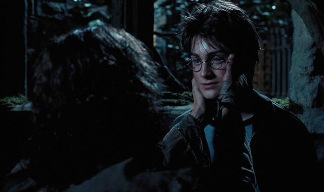 File:Harry and Sirius.jpg