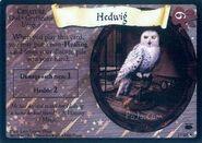 HedwigFoil-TCG