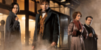 Fantastic Beasts and Where to Find Them (film)
