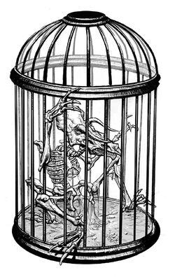 Caged5Legger