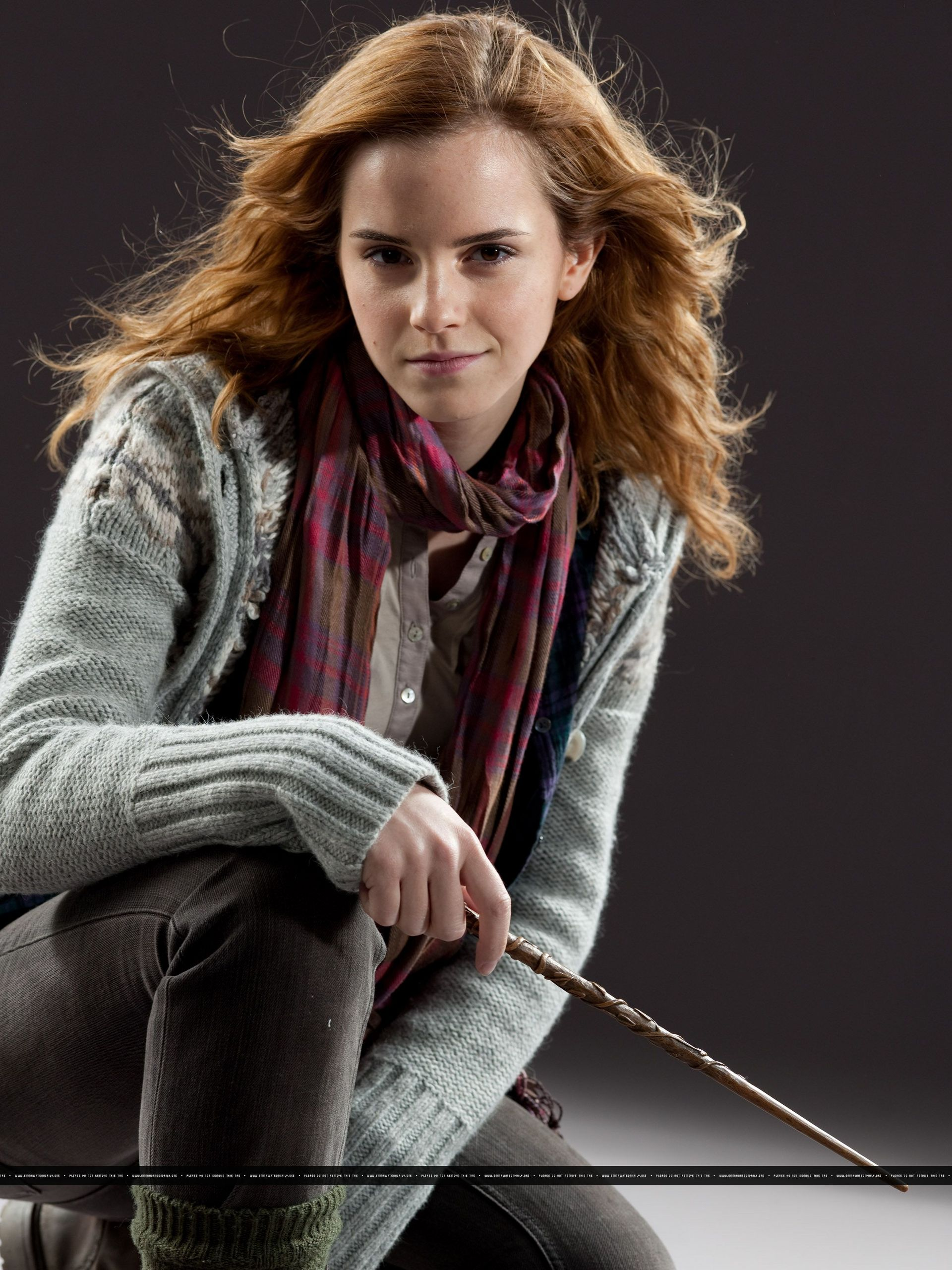 hermione granger harry potter fandom powered by wikia. Black Bedroom Furniture Sets. Home Design Ideas