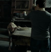 Harry asks Kreacher about the real Horcrux