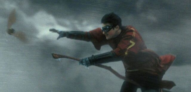 File:Harry chasing the Snitch.jpg