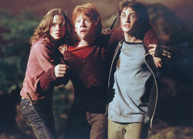 File:Hermione and Harry helping an injured Ron.jpg